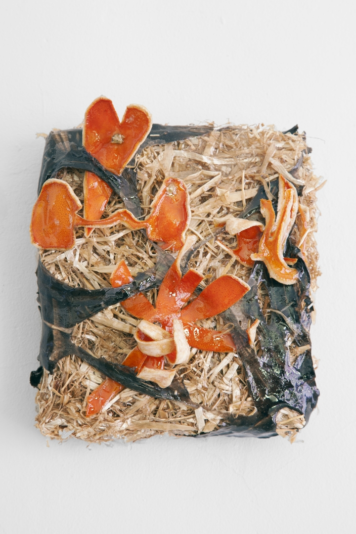Amour sur lit de paille, straw, orange peel, résin, latex, wood (2018) (20x30x10cm)
