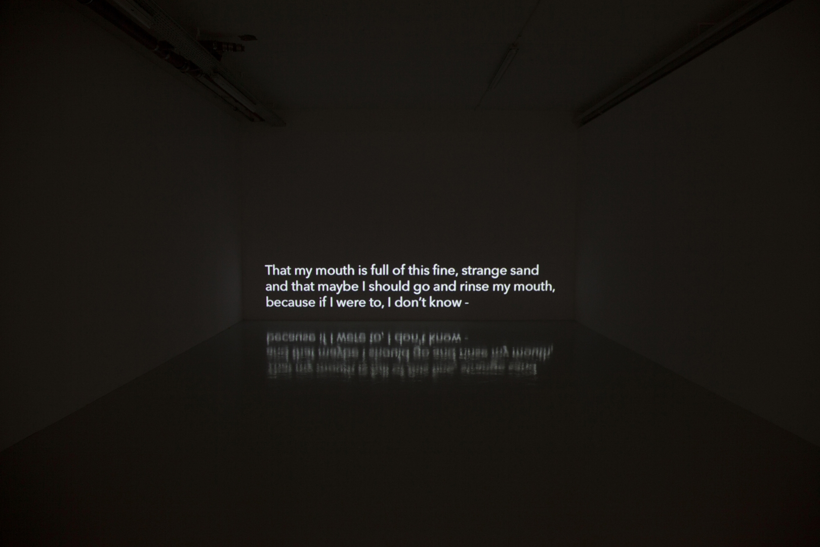 Katarina Hruskova - I carry a tiny knife, audio with subtitles, 2011_17 (installation view).jpg